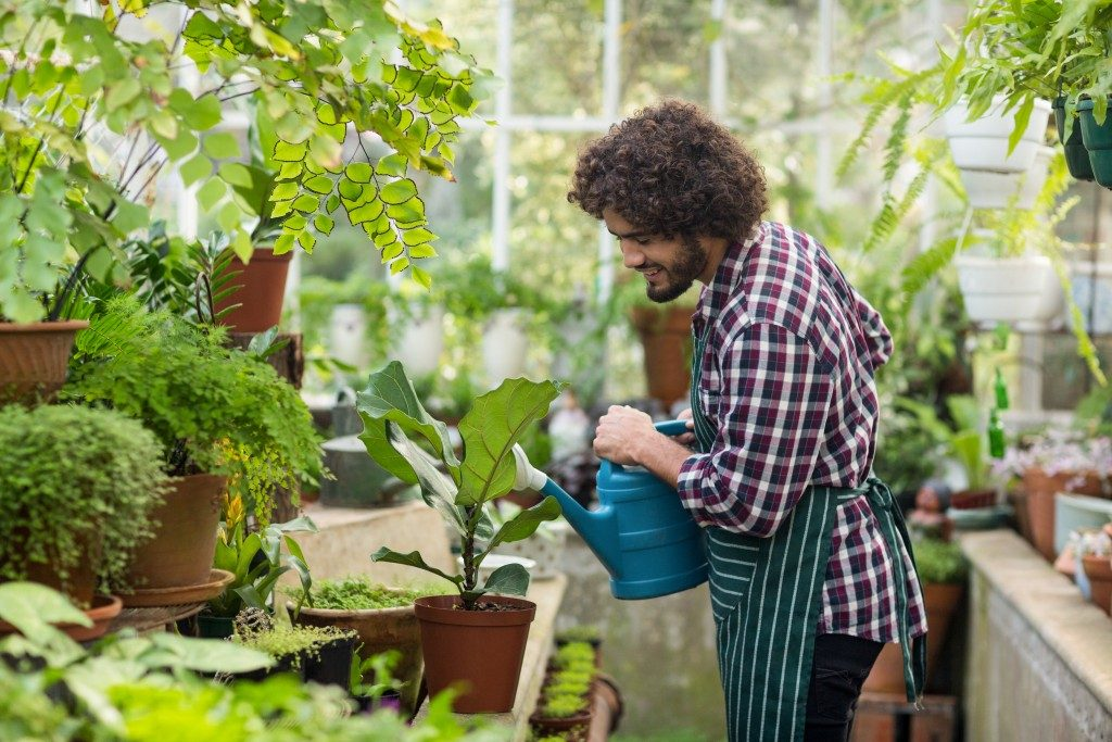Man watering his plants