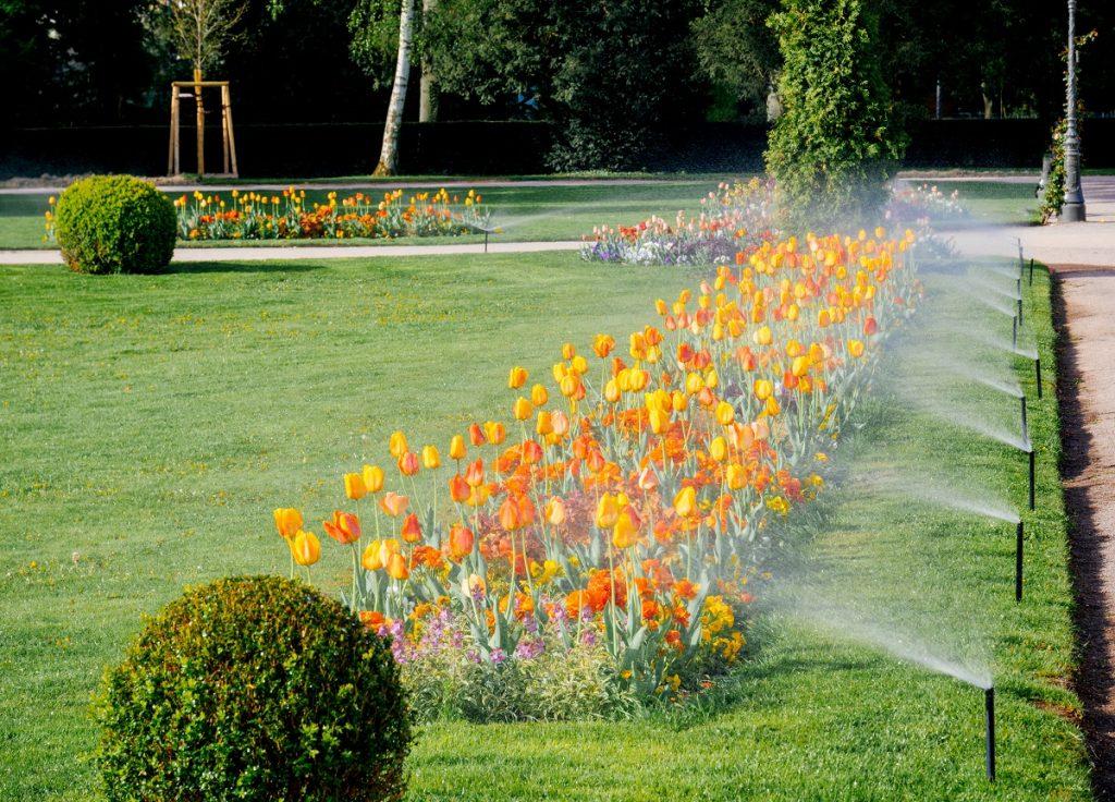 Garden flowers with sprinklers